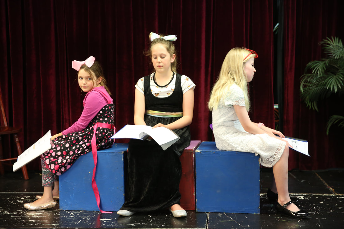 ★ Canberra's Leading Speech & Drama Academy ★ We welcome beginners to experience a warm, inclusive environment, where everyone SHINES!